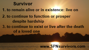 Survivor - web2