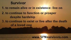 Survivor - web2